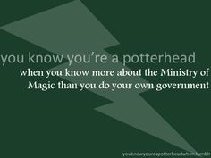 You know you're an American when the Ministry of Magic seems better than your own government. The Ministry of Magic under Voldemort. Harry Potter Fandom, Harry Potter Memes, No Muggles, Ministry Of Magic, Yer A Wizard Harry, Ron Weasley, Mischief Managed, Book Worms, Hogwarts