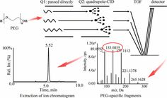 Development and Application of an MSALL-Based Approach for the Quantitative Analysis of Linear Polyethylene Glycols in Rat Plasma by Liquid…