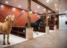- Horse - Gallery - Sweetgrass Equestrian Inc. Gallery - Sweetgrass Equestrian Inc. Dream Stables, Dream Barn, Luxury Horse Barns, Equestrian Stables, Horse Barn Designs, Horse Barn Plans, Horse Barn Decor, Horse Ranch, Horse Stalls