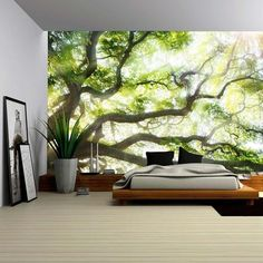 wall26 - Big Tree with Sun Light - Removable Wall Mural | Self-adhesive Large Wallpaper - 100x144 inches - - Amazon.com