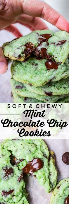 Mint Chocolate Chip Cookies from The Food Charlatan. These Mint Chocolate Chip Cookies are like eating the ice cream in the form of a warm, buttery, gooey cookie. They're crisp on the edges while perfectly tender and chewy in the center. #mint #chocolate #chip #cookies #peppermint #chocolatechip #gooey #chewy #easy #recipe #crisp