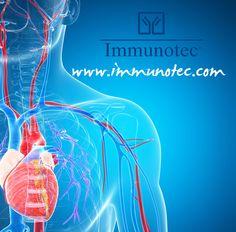 Aprendan sobre la relación del Glutatión y las enfermedades vasculares. Sepan por que es tan importante tomar su #Immuncal todos los días:  http://www.immunotec.com/IRL/images/Immunocations/immunocations_SP/hwc.html