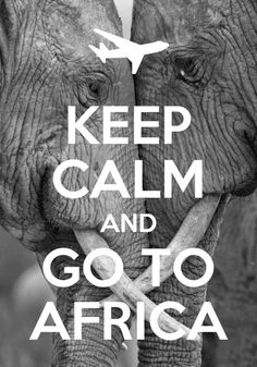 """Keep calm and go to Africa. Love this take on the """"keep calm"""" addage. And the elephants behind are so sweet. Makes me want to go to Africa! Oh The Places You'll Go, Places To Travel, Les Continents, Wale, Gods Timing, Out Of Africa, Africa Art, I Want To Travel, African Safari"""