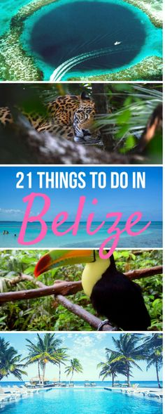 The ultimate list of things to do in Belize. From scuba and snorkeling adventures to honeymoon resorts or eco lodges, suggestions for what to do and where to stay in San Pedro (Ambergris Caye), Caye Caulker, San Ignacio, and beyond! Belize Vacations, Belize Travel, Belize Honeymoon, Belize Resorts, Trip To Belize, Places For Honeymoon, Beach Vacations, Belize City, Travel Tips
