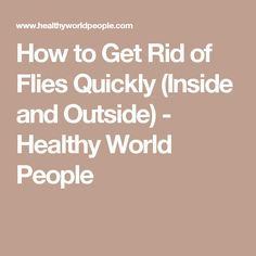 How to Get Rid of Flies Quickly (Inside and Outside) - Healthy World People