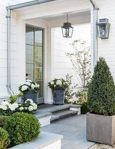Love the white hydrangeas with green foliage, boxwood and gray containers, galvanized lantern style light fixtures, bluestone steps, white siding, galvanized gutters. Simple glass door with thin frame and mullions. Simple chic