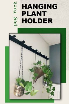 Peg Rack Hanging Plant Holder English Ivy Plant, Plant Bugs, Ivy Plants, Wall Anchors, The Perfect Touch, Hanging Plants, Plant Holders, Houseplants, Garden Landscaping