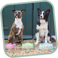 Táto štýlová miska Beco Bowl teba a tvojho psa dostane nielen jedinečným štvorvlnovým dizajnom, ktorý sa prispôsobí každému psiemu plemenu, ale aj vyhotovením v príjemných farbách.  Je vyrobená zo zbytkov rastlinných vlákien objavených v bambuse a z ryžových šupiek, ktoré sú určené na produkovanie výrobkov, ktoré podliehajú prirodzenému rozkladu. Je šetrná k životnému prostrediu a po jej kompostovaní je schopná kompletne sa rozložiť do 3-5 rokov. Dogs For Sale, Dog Shampoo, Pet Bowls, Natural Rubber, Save The Planet, Dog Friends, Dogs And Puppies, Eco Friendly, Pets