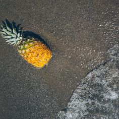 Image of Pineapple At The Beach. This free stock photo is also about: Water, Beach, Tropical, and Pineapple. Beach Images, Beach Photos, Cool Photos, Ripe Pineapple, Pineapple Images, Have A Great Vacation, Stunning Photography, Better Photography, Photography Tricks