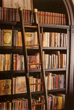 give me a private library with a ladder