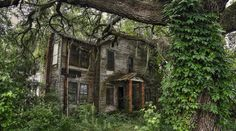 The 11 Strangest Abandoned Places in South Carolina - Abandoned asylums, lighthouses, and creepy tunnels have been left to waste away in South Carolina...