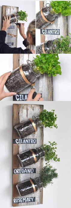 :: Mason Jar Herb Garden Live in an apartment? You can have an herb garden, too. Use mason jars and a wooden board on a spare kitchen wall.Live in an apartment? You can have an herb garden, too. Use mason jars and a wooden board on a spare kitchen wall. Mason Jar Projects, Mason Jar Crafts, Mason Jar Diy, Diy Projects, House Projects, Garden Projects, Weekend Projects, Mason Jar Herbs, Mason Jar Herb Garden