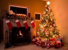 Árvore de Natal – Dia certo para montar