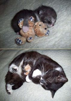 Then and now, with favorite teddy bear.