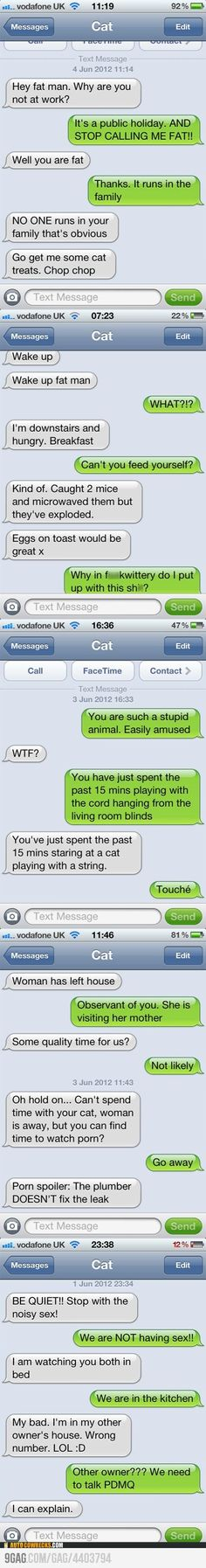 """Text from cat( hello, this is cat). """"Why in fuckwittery do I put up with this shit?"""""""