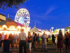 Sacramento County Fair 2014