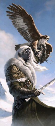 m Drow Elf Ranger sword w Hawk Heroes - Rangers - Minus Fantasy Races, High Fantasy, Fantasy Warrior, Fantasy Rpg, Medieval Fantasy, Fantasy Artwork, Fantasy World, Warrior Angel, Elves Fantasy