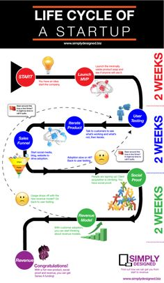 Project Life Cycle - Management Guru