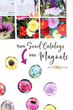 Turn Seed catalogs into Fridge Magnets - Seed catalogs are packed with stunning photography that gardeners can appreciate, so instead of tossing it … Easy Diy Projects, Projects To Try, Craft Projects, Pinterest Crafts, Seed Catalogs, Diy Candles, Wire Art, Diy And Crafts, Kids Crafts