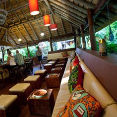 Sefapane Lodge and Safaris Swim Up Bar, Thatched Roof, Yummy Snacks, Lodges, Perfect Place, South Africa, Safari, Maine, African