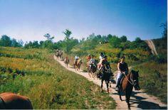 Les nombreux centres équestres de la région offre aussi des sorties guidées pour toute la famille au cœur de la forêt mascouchoise.