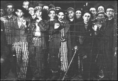 Echoes of Tattered Tongues: Memory Unfolded: Liberation of Buchenwald, April 11 1945