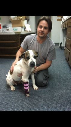 Celerity Prosthetics - former bait dog that was rescued and fit with a prosthetic foot given the ability to walk!  http://www.news9.com/clip/12233461/former-bait-dog-with-deformed-paw-gets-prosthesis