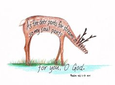Image result for bible journaling water