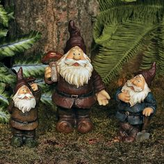 "Garden Gnomes. According to legend, gnomes are known for guarding treasure they've hidden underground. These resin gnomes have popped up for a breath of fresh air, and they will become welcome sentries in your sunlit garden. A great gift idea, buy an extra set of these fanciful garden accents for your favorite gnome collector. 4"" to 7""H. $15.00 1 Set(s) OrientalTrading.com"