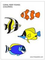 Colored Coral Reef Fishes Template + other sea animal templates
