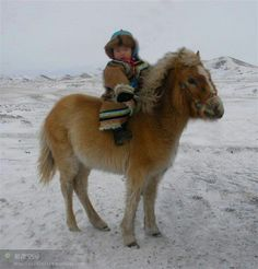 Cavallo - goodness, gracious!