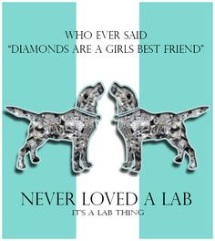 A Website dedicated to Labradors, Labrador Lovers and Labrador Parents. It's a Lab Thing puts Labradors first, Gives Labrador rescues a voice and supports the Pit Bull, I Love Dogs, Puppy Love, Mastiff, Alaskan Klee Kai, Homeless Dogs, Labrador Retriever Dog, Labrador Puppies, Corgi Puppies