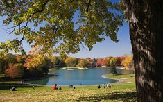 Check out this list: The Best of Autumn in Montreal Atwater Market, Old Montreal, Royal Park, Mont Real, Golden Gate Park, Hair Raising, Autumn Activities, Nice View, The Neighbourhood