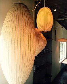 2018/08/11 . . 私の好きな照明シリーズ ジョージネルソンのバブルランプ . . 画像とかで見てた時は和テイストかな〜って思ったけど 実際に見てみると北欧っぽいインテリアにもめっちゃ合ってた◎ . サイズ大きくてインパクトすごかった 部屋の主役になっちゃうレベル! . 違う形、サイズのものを複数合わせて使うのが可愛い! . . #私の好きな照明 #照明シリーズ #照明 ##照明器具 #ジョージネルソン #バブルランプ #可愛い #そして #おっきい #efish #cafe #京都 #kyoto #カフェ