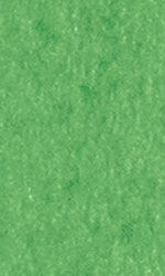 Tissue Paper - Lawn Green