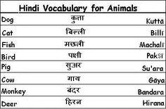 Hindi Vocabulary Words for Animals - Learn Hindi