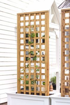 19 Awesome DIY Trellis Ideas For Your Garden, Tags: How do you build a trellis?, What is a garden trellis used for?, How do you grow cucumbers on a trellis?, What is a trellis design? Trellis Design, Diy Trellis, Garden Trellis, Balcony Garden, Trellis Ideas, Herbs Garden, Fruit Garden, Privacy Trellis, Porch Trellis
