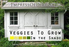 veggies you can grow in the shade, flowers, gardening