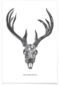 The Deer Skull of Mathilde Olsen now on JUNIQE!