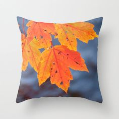 Hey, I found this really awesome Etsy listing at http://www.etsy.com/listing/156113263/orange-leaves-pillow-cover-16x16-home
