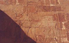 Hatshepsut amamantada por Hathor. Templo de Deir el-Bahari. R.Nuevo, XVIII Din. Tebas. Este relieve se encuentra en la capilla de Hathor. Tallado en piedra caliza.