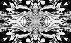 https://flic.kr/p/HAzr32 | Lotus Mandala in Black and White Pastels 2  By Sherrie D. Larch | A mandala is a piece of art design that symbolizes the universe in both Hinduism and Buddhism. These pieces of art are used as a meditation tool for visualization.  My Facebook Artist Page: www.facebook.com/sherriedlarch/