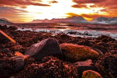 Storm of passion rising at mountains feet. Mermaid dreaming in waves amongst coppary seaweed. Oh sky of golden can you feel Her… Lapland Finland, Seaweed, Mermaid, How Are You Feeling, Waves, Passion, Sky, Adventure, Mountains
