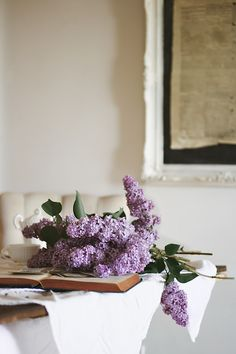 Lilac Mornings