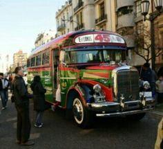 Tipico medio de transporte de Buenos Aires