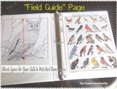 bird notebook field page~Free Bird Journal {Coloring & Identification Pages} - Anita Smith Home Teaching Science, Science For Kids, Science Activities, Science Projects, Science And Nature, Nature Activities, Science Fun, Montessori Activities, Science Education