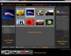 Learn Lightroom in a Week - Day 1: Workspace and Preferences - Tuts+ Photography Tutorial