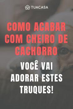 Dicas para eliminar o cheiro de cachorro de casa Pintar Formica, Baby Dogs, Pet Dogs, Life Organization, Dog Art, Pet Shop, Dog Lovers, Pitbulls, Tips