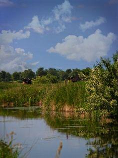 Urlaub in Ostfriesland | Ferien in Ostfriesland