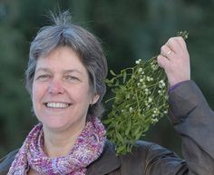 Mistletoe cures woman's cancer after she shuns chemotherapy